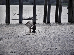 Fisherman checking nets
