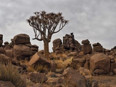 Namibia Mesosaurus Fossil Site