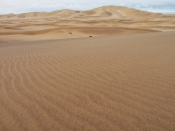 Dorob National Park