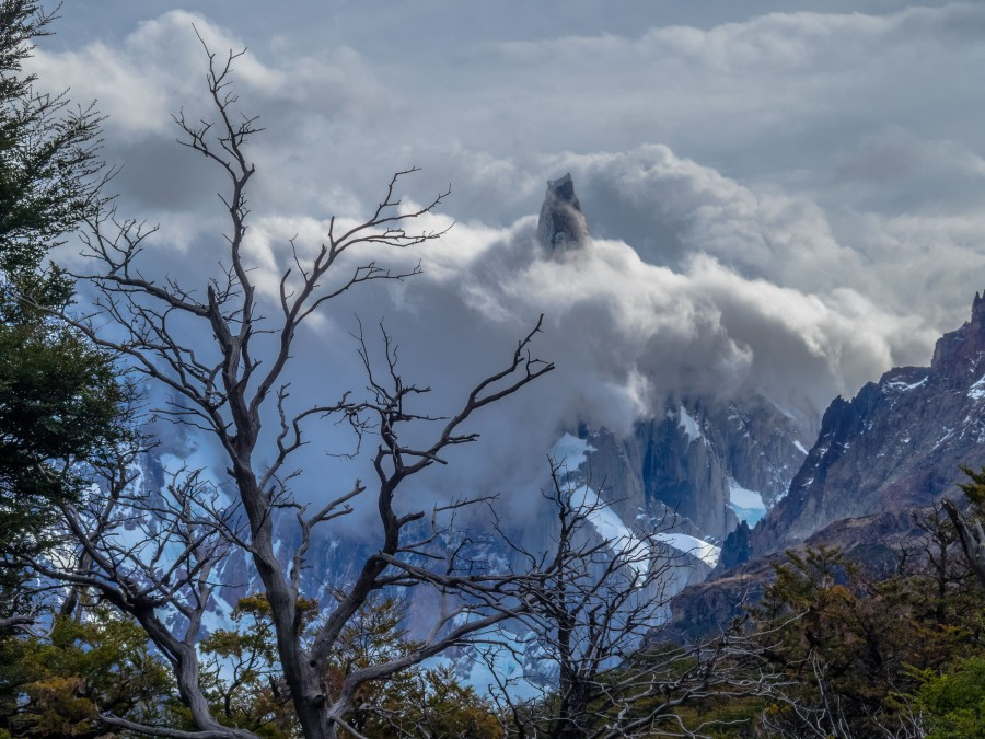 Cerro Torre: Towering Above the Clouds